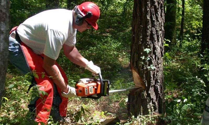 Forstwirtschaft, Garten- und Landschaftsbau - betriebsspezifische Betreuung - Arbeitsmedizin in OWL